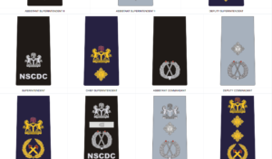 Civil Defence Insignia